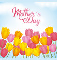 mothers day greetings card with hand lettering vector image