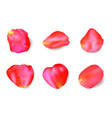 red rose petals set realistic vector image vector image