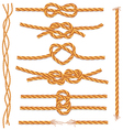 Set of ropes and knots vector | Price: 1 Credit (USD $1)