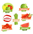 set of tasty logos vector image