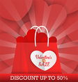 Valentines Day sale background with shopping bag vector image