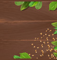 brown background with wooden texture and vector image vector image