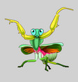 expressive grasshopper in cartoon style vector image