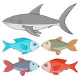 fishes collection of colored fishes and shark vector image vector image