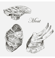 steak meat hand drawing with pepper and vector image vector image