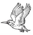 birds annimal wing drawing icon logo vintage vector image