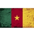 Cameroon flag Grunge background vector image vector image