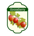 gooseberry label vector image