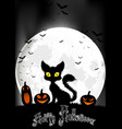 Halloween background with cat and pumpkins