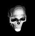 human skull on dark background vector image vector image
