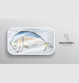 mackerel fish one in foam tray wrapped in plastic vector image vector image