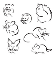 Set of rodents vector image