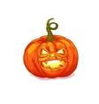 Halloween pumpkin cartoon vector image