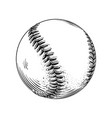 hand drawn sketch of baseball ball in black vector image vector image
