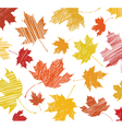 maple leaf sketch vector image vector image