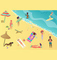 people at beach sunbathing talking surfing and vector image vector image