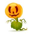 Pumpkin monster vector image vector image