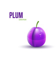 Realistic Plum isolated on white background vector image vector image