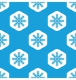 Snowflake hexagon pattern vector image vector image