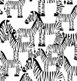Zebra seamless pattern Savannah Animal ornament vector image