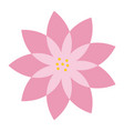 pink flower natural decoration delicate vector image