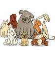 cartoon purebred dogs group vector image vector image