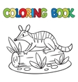 Coloring book of little numbat vector image vector image
