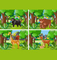 four forest scene with wild animals vector image vector image