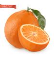 orange fresh fruit 3d realistic icon vector image vector image