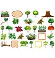 set ornamental plants vector image vector image