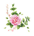 watercolor hand painting of vector image vector image