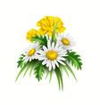3d yellow diasy cornflower elegant bouquet vector image vector image