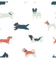 funny dogs seamless pattern flat vector image