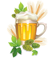 Glass of barley beer with foam vector image vector image