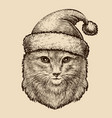 portrait of a cute fluffy cat in a christmas hat vector image vector image