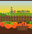 pumpkin harvest in a cart garden vector image vector image