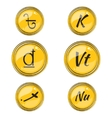 Set with Flat South Asian Currency Symbols vector image