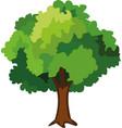 a tree emoticon vector image vector image