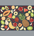 delicious summer food watermelon pineapple vector image