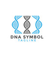 dna symbol graphic design element vector image