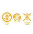 gluten free label wheat cereal icons vector image vector image