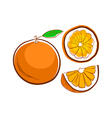 hand drawn orange with slices vector image vector image
