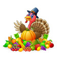 happy pilgrim turkey bird cartoon with fruits and vector image