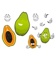 Mexican tropical papaya fruit cartoon characters vector image vector image
