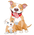 Pit-bull mother and cub vector image vector image