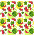 seamless pattern watermelon tropical summer vector image