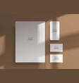 branding mockups natural lighting shadows overlay vector image