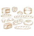 Bread and bakery sketch icons vector image