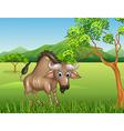 Cartoon wildebeest mascot in the jungle vector image vector image