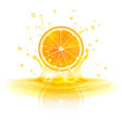 orange in a splash of juice vector image vector image